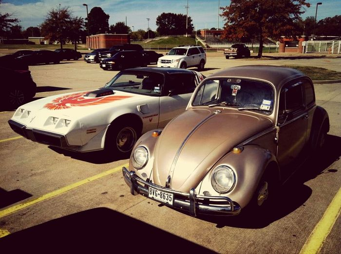 My '65 Beetle and my boyfriend's '80 Trans Am. :) We love our old cars. Vintage Cars Soawesome
