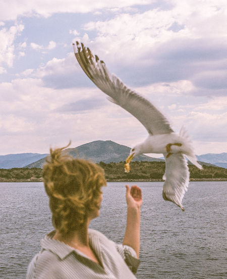 Rear view of woman flying seagull against sky