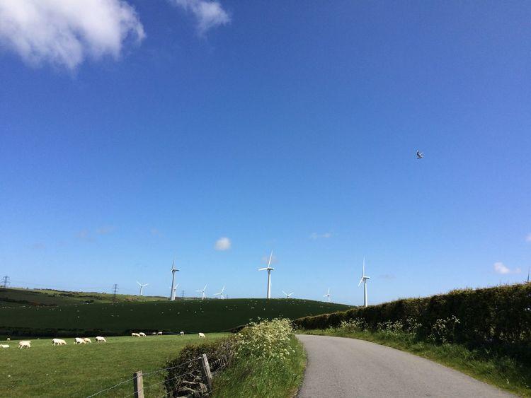 Windturbines Green Hills Wales Nature Natural Clouds Sheep