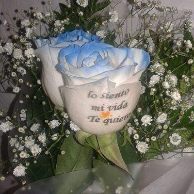 Ramito de dos rosas con filos axules y mensaje pidiendo perdon. Www.graficflower.com Ramoderosas Ramosderosas Rosasazules Rosaazul Rosastatuadas Rosapersonalizada Regalodeaniversario RegaloDeCumpleaños Regalooriginal Regalopersonalizado