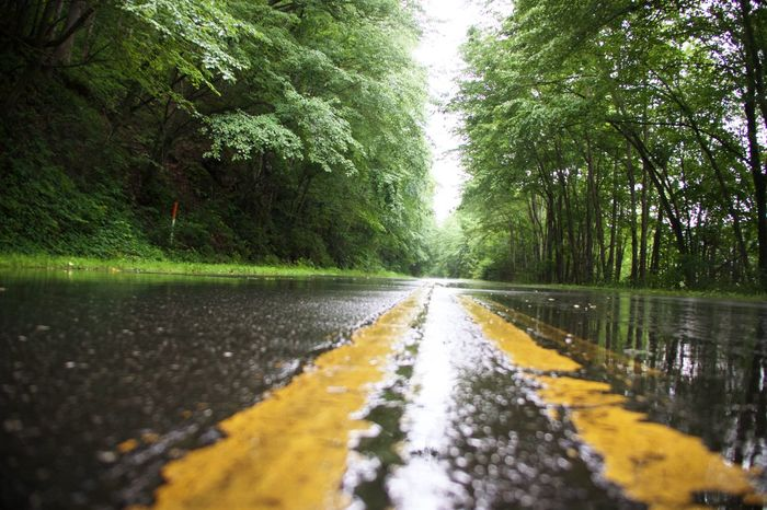 Caught in a rain shower Road The Way Forward Tree Surface Level Nature Outdoors No People Transportation Day Beauty In Nature Sky