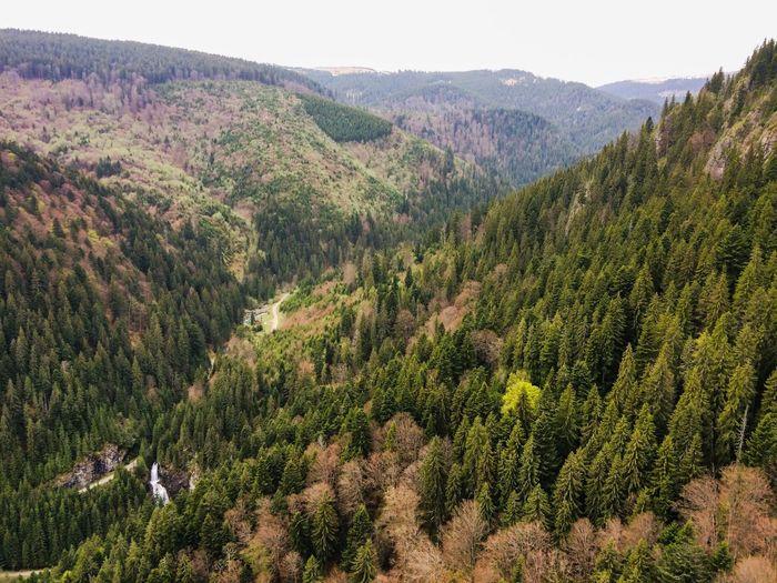Nature Mountain Apuseni Romania Travel Landscape Photography Findpeace Findlove Zilefericite Spring Outdoors Hiking Visitmargau Parculnaturalapuseni