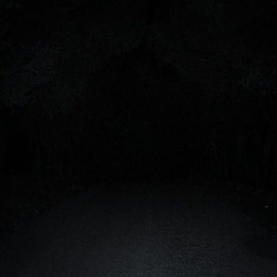 Miedo Oscuridad Arkax