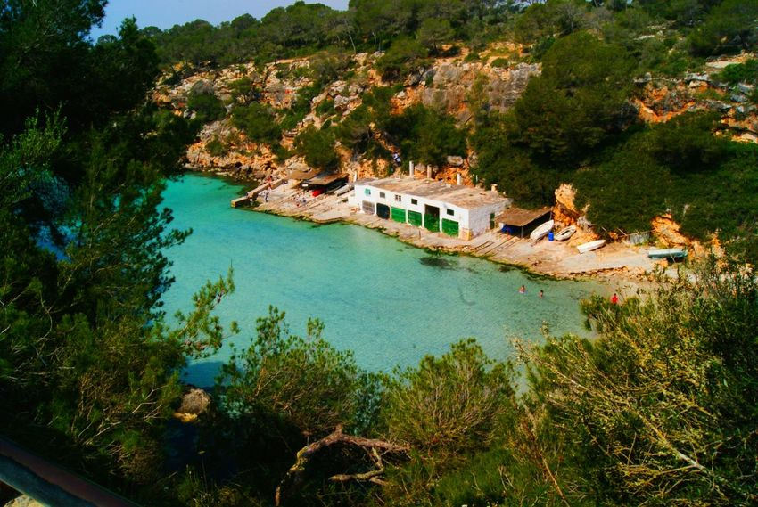 Mallorca Calapi Water High Angle View Tree Day Plant Nature Beauty In Nature Sand Beach Summer