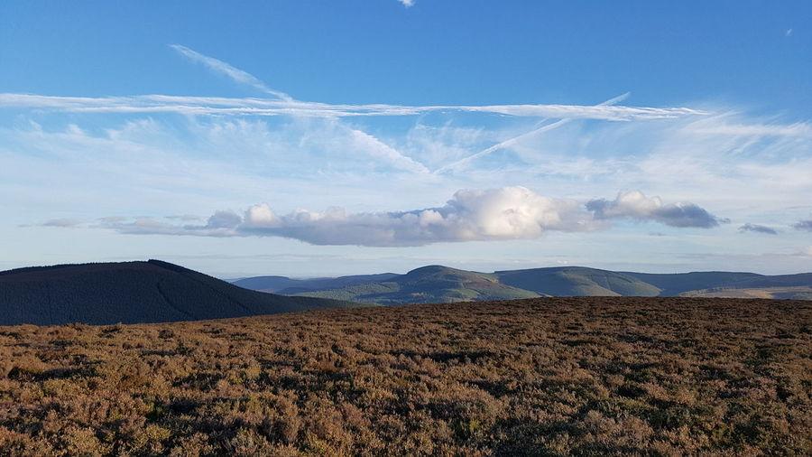 Autumnal afternoon on Priesthope Hill. Landscape Scottish Borders Scotland Landscape Photography Landscape_Collection Contrails Heather EyeEm Selects Blue Sky Landscape Cloud - Sky