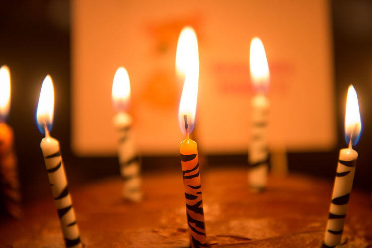 Birthday Candles Burning Candle Celebration Close-up Fire - Natural Phenomenon Flame Focus On Foreground Glowing Heat - Temperature Illuminated Indoors  No People Oil Lamp Tea Light Tradition Wax