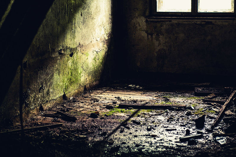 the abandoned room Room Old Room  No People Multi Colored Beauty In Nature Beautiful Dirty Window Green Moos Plant Stone Stone Material Wood Wood - Material Wall Decay Lost Places Lostplaces Strong Powerful WOW ReCapture Haus Old Hause Indoor Indoorsphotography Indoorsphotography No People Light And Shadow Sunlight EyeEmNewHere The Still Life Photographer - 2018 EyeEm Awards The Architect - 2018 EyeEm Awards The Creative - 2018 EyeEm Awards The Street Photographer - 2018 EyeEm Awards Creative Space HUAWEI Photo Award: After Dark #urbanana: The Urban Playground A New Beginning