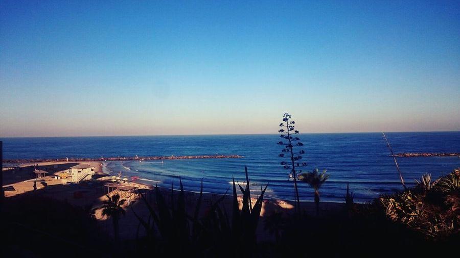 Israel Tel Aviv Beach Horizon Over Water Tranquil Scene Beauty In Nature Coastline Sky Calm Sea Water Blue Goodvibes Non-urban Scene Harbor Idyllic Tranquility Shore