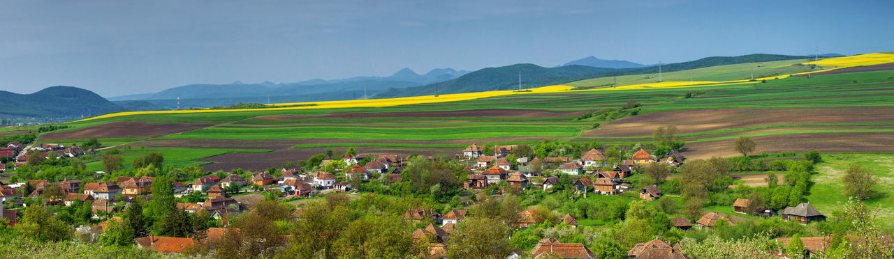Springtime panoramas with rural views. Clear Sky Green Hills Morning Nature Panorama Panoramic RapeFlowers Rural Trees View Agriculture Blue Field Hillside Landscape Mountain Outdoors Scenics Season  Spring Springtime View From Above Yellow