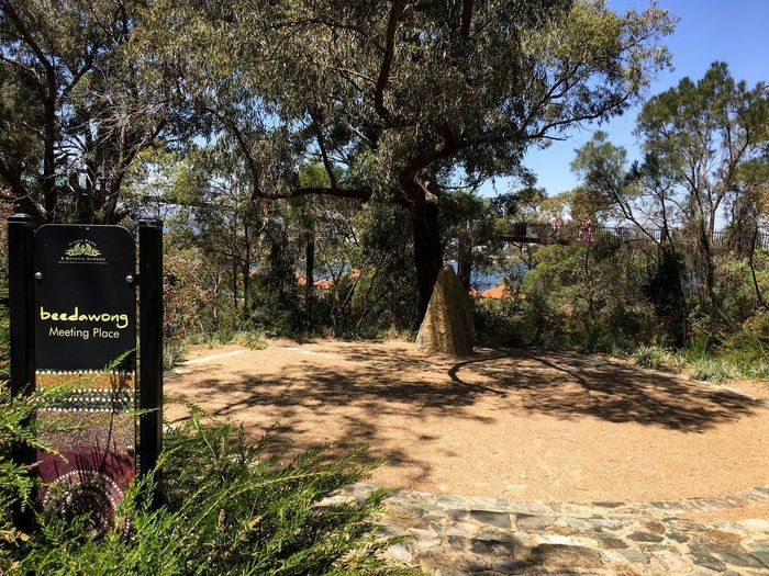 Signage Signpost Kings Park And Botanic Garden Beedawong Meeting Place Celebration Hire Venue Cultural Place Pinnacle Rock Indigenous Culture Visitors Tourists Elevated Walkway Lotterywest Federation Walkway Western Australia October 2016 Plant Tree Sunlight Nature Park Day No People Outdoors Park - Man Made Space Field Sunny Shadow Growth Green Color