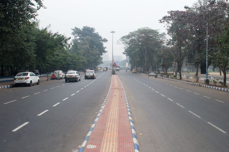 Vehicles on road against trees in city