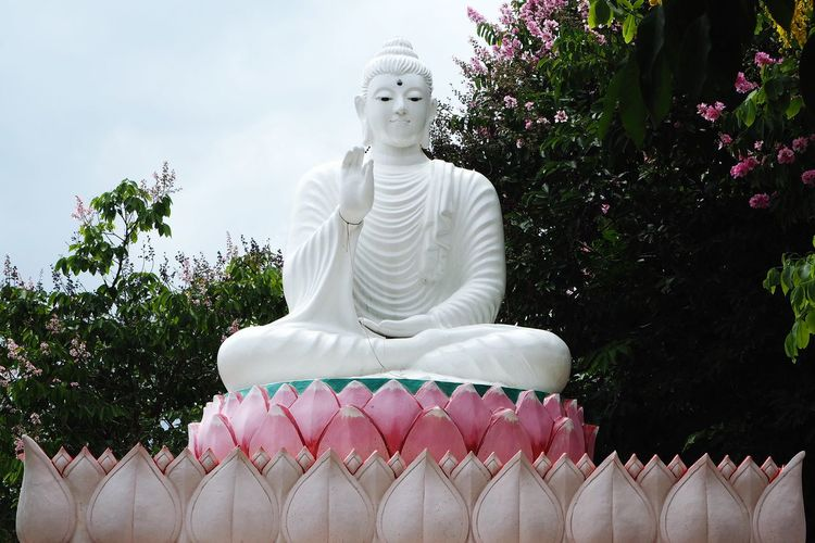 Low Angle View Of Buddha Statue Against Trees