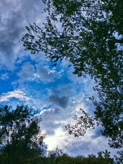 When the rain is over in Teolo, Padua, Italy Travel Italy Teolo Padua Mobile Photography Art Fineart Backlight Sky Clouds
