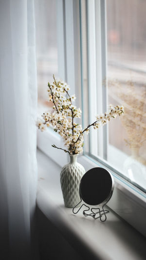 Close-up of white flower vase on window sill