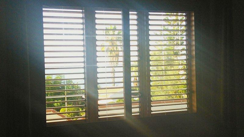 Window Sunshine Holidays