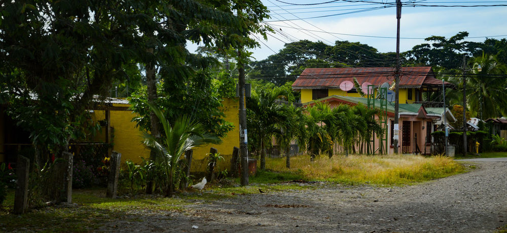 Costa Rica Houses Architecture Building Exterior Built Structure Cahuita Colorful Day Grass No People Outdoors Tree