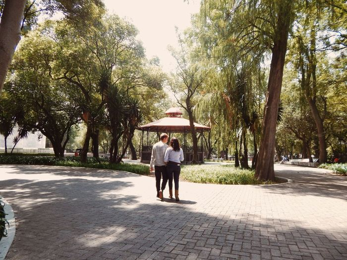 Rear view of couple at park