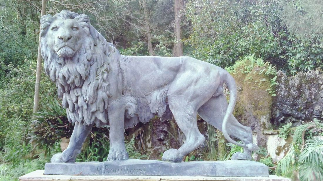 The lion One Animal Side View Statue Lion