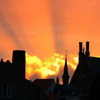 Bélgica Loyalproup Loyal_group1 Atardecer sunset