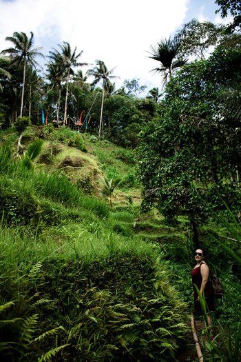 Bali, Indonesia Plant Tree Growth Grass Green Color Nature Tropical Climate Real People Land One Person Lifestyles Beauty In Nature Adult Outdoors Sky