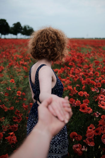 Somewhere right before Usedom, Germany Redhead Woman Adult Beauty In Nature Curly Curly Hair Day Field Flower Flowering Plant Freshness Girl Growth Hair Hairstyle Land Lifestyles Nature One Person Outdoors Plant Poppy Poppy Flowers Rear View Women My Best Photo International Women's Day 2019