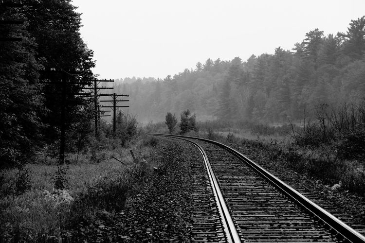 Into the Forrest. Black And White Black And White Photography Connection Forrest Forrest Photography In The Forest Leading Narrow Naturelovers Parrysound Perspective Rail Transportation Railroad Railroad Track Railway The Way Forward Train Tracks Transportation TreePorn First Eyeem Photo