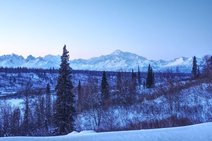 Alaska Mount Denali Cold Temperature Snow Sky Winter Mountain Clear Sky Nature Scenics - Nature Blue Beauty In Nature No People Tranquil Scene Frozen Snowcapped Mountain