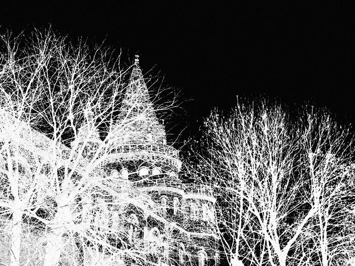 Blackandwhite Building And Trees Treescollection Art is Everywhere Europe Trip