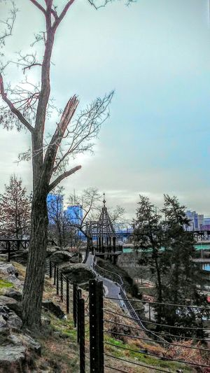 Hanging Out Taking Photos Hello World Enjoying Life Great Day  Trees Pathways Beautiful Blue Cityscapes Showcase: January PhiladelphiaPeaceful And Serene Walking Around Photos By Jeanette Awesome View Amazing View