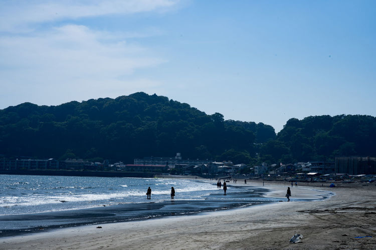 Kamakura Beach Beauty In Nature Day Group Of People Incidental People Land Lifestyles Men Nature Outdoors People Plant Real People Sand Scenics - Nature Sea Sky Tree Water 鎌倉