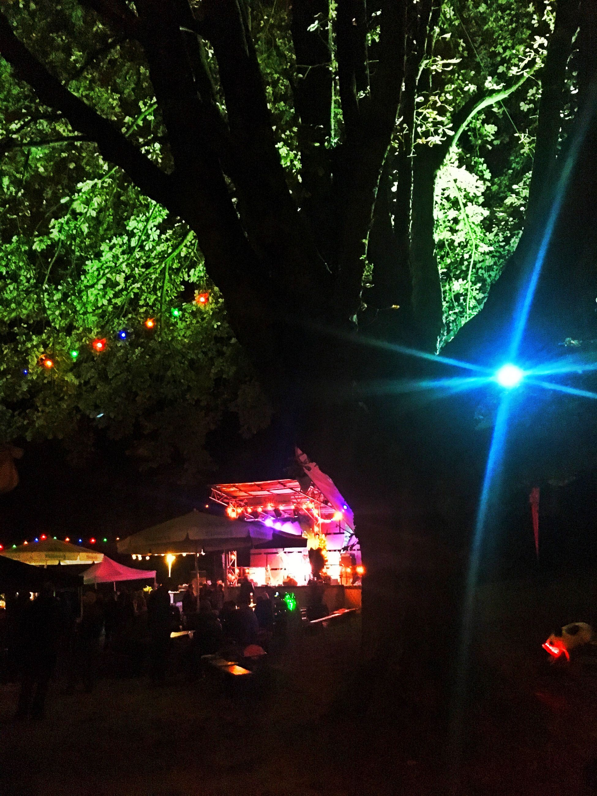 illuminated, tree, lighting equipment, night, tree trunk, decoration, growth, branch, lens flare, green color, nightlife, light beam, tranquility, vacations, electric light, outdoors, fairy lights, tranquil scene, amusement park, multi colored