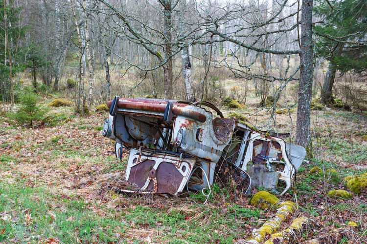 Abandoned truck on field in forest