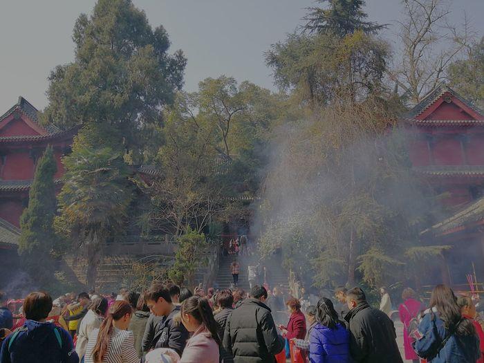 Crowd Holi Tree