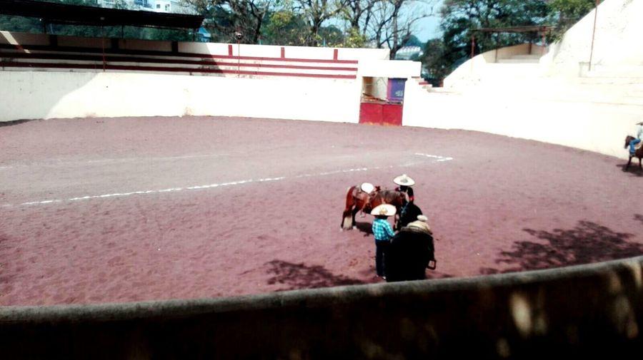 Amore Mio ❤ Lienzo Charros Mexico