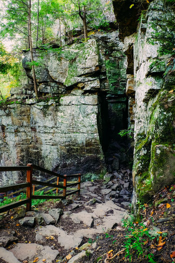 Fall Creek Falls State Park, Tennessee, United States. Hiking National Park Rails Steps Trees USA Day Fall Creek Falls Mountains Nature No People Outdoors Rocks Spencer State Park  Tenessee Tn Trail United States Of America Wooden First Eyeem Photo
