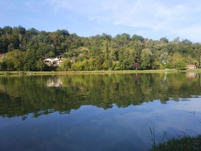 France Occitania Tree Water Lake Symmetry Reflection Sky Reflection Lake Tranquil Scene Tranquility Calm