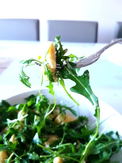 Tortellini Panna e Rucola Food Foodphotography Italy Noodles Creamcheese Parmesan Plant Indoors  Leaf No People Growth Flower Healthy Eating Herb Nature Day