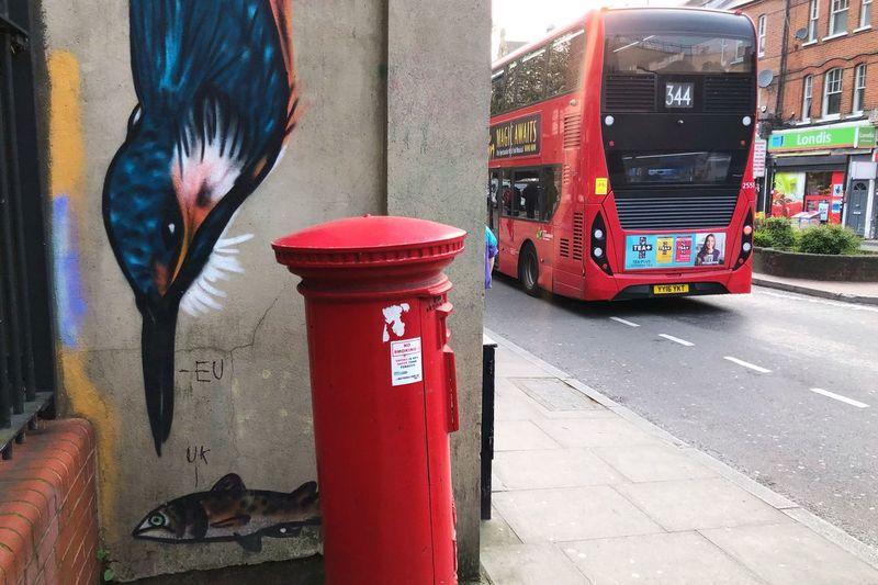 London Bird
