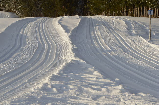 Langlaufen Schnee Skiing Beauty In Nature Cold Temperature Cross Country Skiing Loipe Nature Outdoors Ski Track Skiing Tracks Snow Tracks In Snow White Color