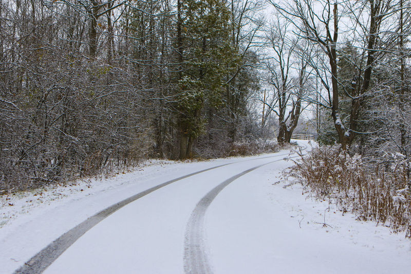 Snowy Road Cold Temperature Landscape Road Snow Tire Tracks Tire Tracks In Snow Windy Road Winter