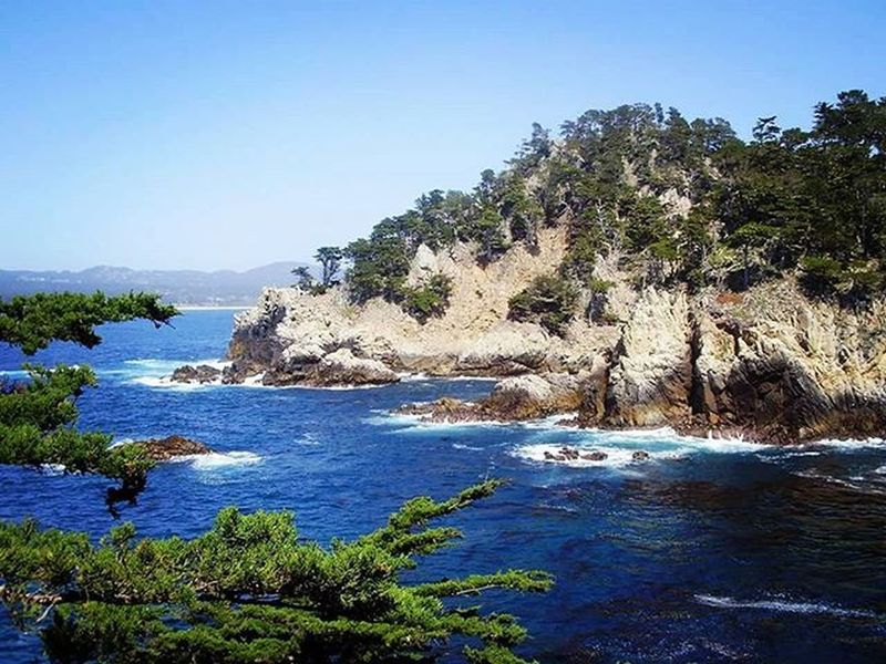 One of the amazing views from my hike at Point Lobos State Reserve back in 2010. I love the ocean. Pointlobos Pointlobosstatereserve California Carmelbythesea Ocean Oceanside Hikingbythesea Pacific Pacificocean Beautiful Beautifulplace Nature Naturewatching Hikingadventures Pacificcoast