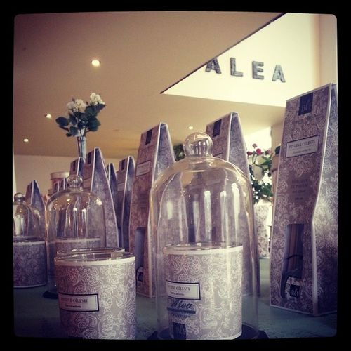 Un mundo de velas aromáticas de alta gama con los mejores perfumes franceses en Alea flores | concept store de urzaiz, 78 y c/ barcelina, 83 de Vigo. Velasaromáticas Scentedcandles Bougieslafrançaise Lifestyle Fragancias Vigo Flores