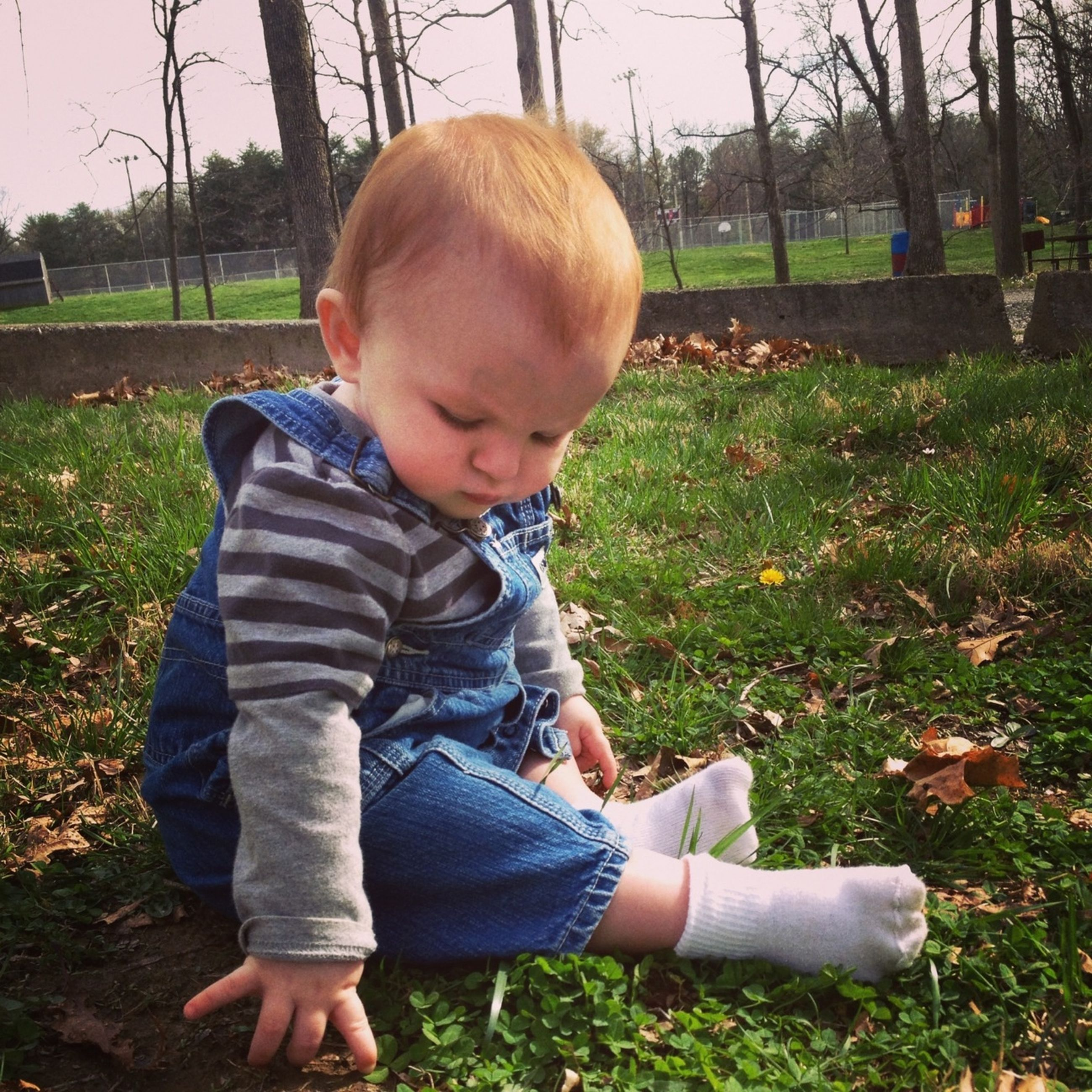 childhood, elementary age, person, innocence, boys, grass, cute, lifestyles, casual clothing, leisure activity, girls, field, full length, park - man made space, playful, toddler, baby, babyhood