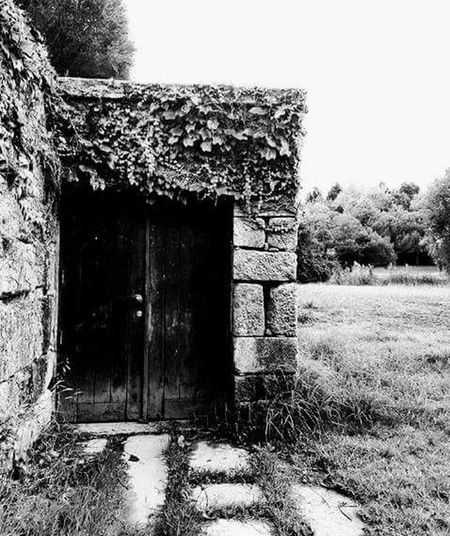 What's inside?? 😱 Porta Misterio portasecreta
