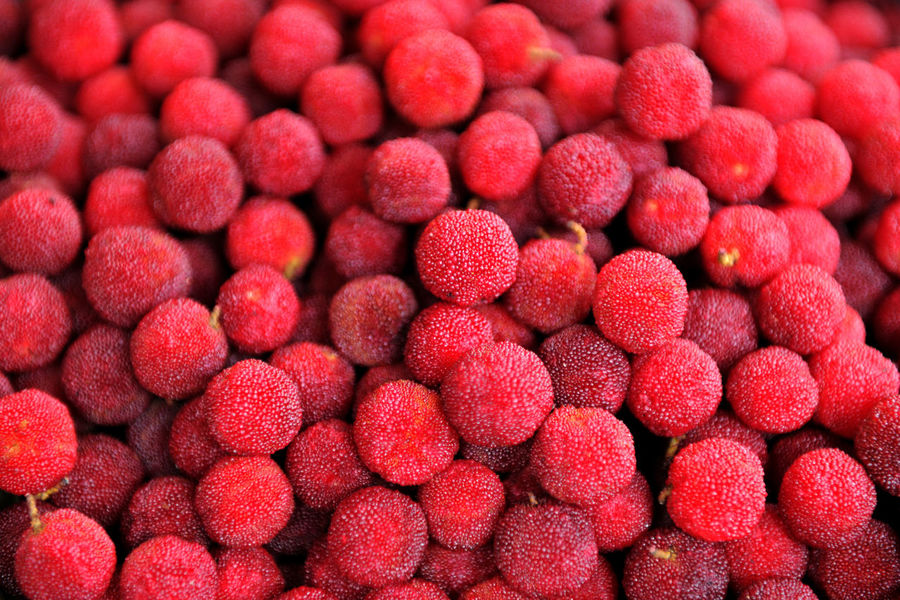 Backgrounds Close-up Day Food Freshness Fruit Full Frame Healthy Eating Large Group Of Objects Myrica Rubra No People Raspberry Red Taiwan