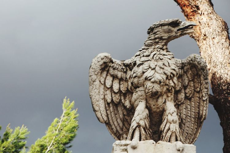 Rom Cloud - Sky Statue Sculpture Art And Craft No People Day Outdoors Low Angle View Animal Themes Bird Sky