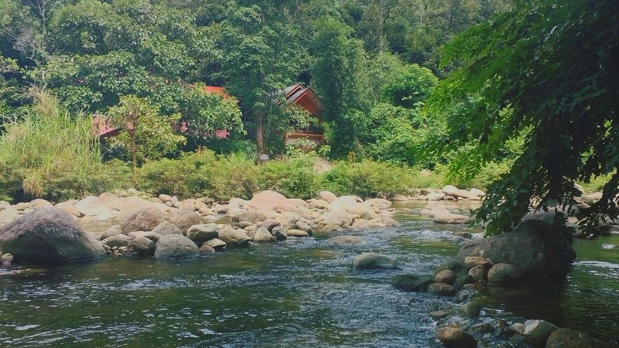 น้ำตกท่าหา หมู่บ้านคีรีวงศ์ Traveling First Eyeem Photo