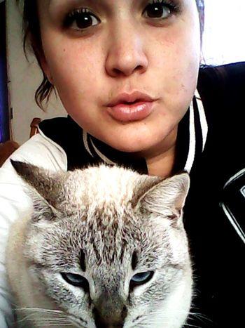 Hi! Selfportrait Catoftheday Cat Selfie Portrait Today's Hot Look Brown Eyes Alwaysbeyourself Be Yourself <3