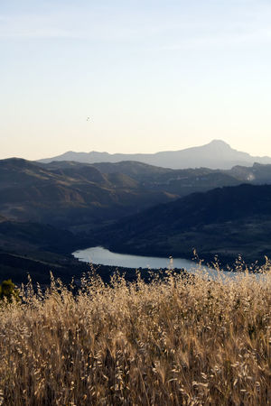 Surroundings of Caccamo, Sicily Sicily Beauty In Nature Caccamo Clear Sky Day Environment Field Growth Italy Land Landscape Mountain Mountain Range Nature No People Non-urban Scene Outdoors Plant River Scenics - Nature Sky Sunlight Tranquil Scene Tranquility Water