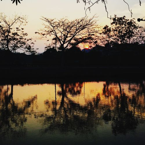 Love the sunset 🌅 Sky Water Reflection Tree Silhouette Lake Nature No People Outdoors Waterfront Beauty In Nature